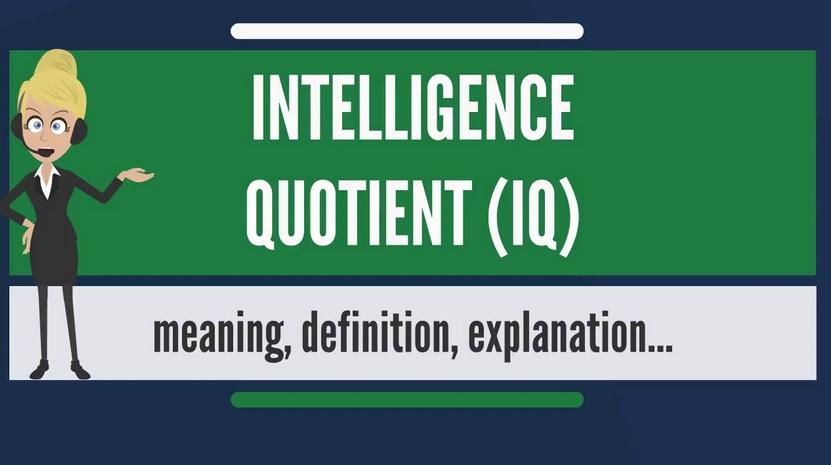 Kecerdasan intelektual